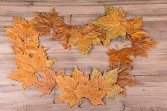 hösten innehåller banan för mappramleaves Royaltyfria Bilder