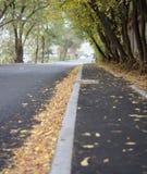 Hösten kom i staden royaltyfri foto