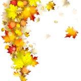 Hösten lämnar royaltyfri illustrationer