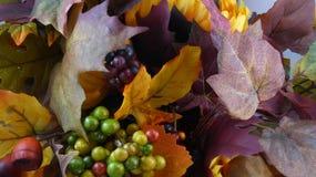 Hösten lämnar bakgrund royaltyfri foto