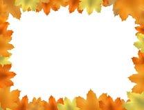 Hösten lämnar för att inrama Fotografering för Bildbyråer