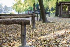 Hösten lämnar i parkera Arkivbild