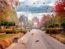 Hösten lämnar virvel i parkerar mellan de färgrika träden royaltyfri bild