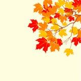 Hösten låter vara bakgrund