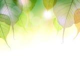 Hösten låter vara bakgrund Fotografering för Bildbyråer