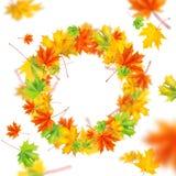 hösten låter vara kranen Arkivfoto