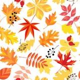 Hösten låter vara modellen Royaltyfri Foto