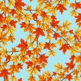 hösten låter vara modellen seamless vektor illustrationer