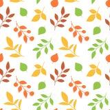 hösten låter vara modellen seamless Arkivfoton