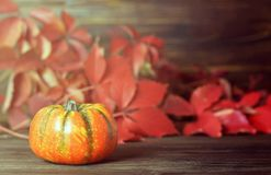 hösten låter vara pumpa aunumnbakgrund låter vara livstid över still tacksägelse trä royaltyfri bild