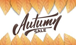 hösten låter vara rött försäljningsord Höstbakgrundsorientering med nedgångleves och handbokstäver Nedgångförsäljning, befordran, vektor illustrationer