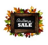 hösten låter vara rött försäljningsord Höstsidor dras med krita på en svart svart tavla Skissa, planlägg beståndsdelar vektor Fotografering för Bildbyråer