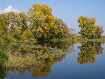 Hösten landskap Arkivfoton