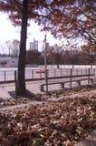 Hösten landskap royaltyfri bild