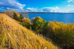 Hösten landskap Berdsk Sibirien, Ryssland Arkivbilder