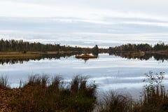 Hösten landskap Eftermiddag, träsk och skog i bakgrunden latvia Gyttja och lerig våt jord royaltyfria bilder
