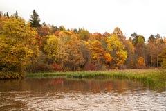 Hösten landskap härlig flod för grupp Arkivfoto