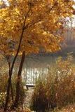 Hösten landskap Härligt tyst ställe för att fiska fotografering för bildbyråer