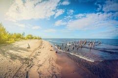 Hösten landskap hinder på den sandiga kusten av sjön royaltyfria foton