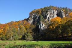 Hösten landskap med den färgrika skogen arkivbild
