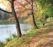 Hösten landskap med trees Arkivbild
