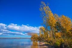 Hösten landskap Ob behållare, Novosibirsk region, Berdsk, Sibe Royaltyfri Fotografi