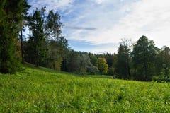 Hösten landskap Parkera i höst arkivfoto