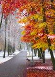 hösten möter vinter Royaltyfri Fotografi