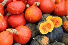 Hösten marknadsför Pumpor royaltyfri fotografi