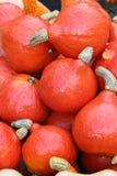 Hösten marknadsför Pumpor royaltyfria bilder