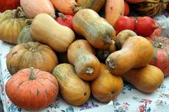 Hösten marknadsför Pumpor arkivbilder