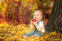 Hösten nedgången, flickan, barnet, litet som är lyckligt, ungen, natur, parkerar, sidor, säsongen, ståenden, guling, lövverk, beh arkivbilder