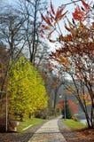 Hösten parkerar Royaltyfri Bild