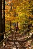 Hösten parkerar Arkivbilder