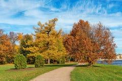 Hösten parkerar Arkivfoto