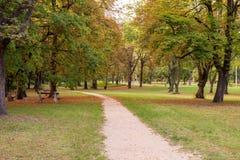 Hösten parkerar med vägen royaltyfria foton