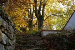 Hösten parkerar och stenar trappuppgången arkivfoton
