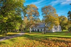 Hösten parkerar Padise Estland, Europa Royaltyfria Foton
