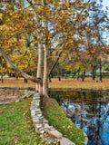 Hösten parkerar platser Royaltyfri Bild