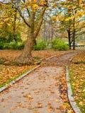 Hösten parkerar platser Arkivfoto