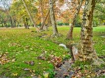 Hösten parkerar platser Royaltyfria Bilder