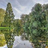 Hösten parkerar reflexion royaltyfria bilder