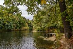 Hösten parkerar Sjö Arkivfoto