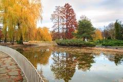 Hösten parkerar sjön med reflexion Arkivfoto
