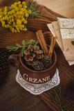 Hösten sörjer och kanel i den bruna lerakrukan Fotografering för Bildbyråer