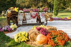 Hösten skördade grönsaker på den traditionella ukrainska lantliga lantliga vagnen Royaltyfri Fotografi