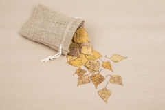 hösten torkade leaves Arkivfoton
