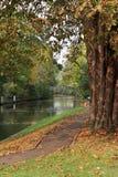höstengland flod thames Royaltyfri Bild