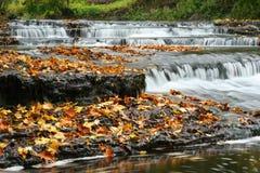 höstestonia vattenfall royaltyfri fotografi