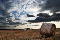 Höstfält Arkivfoton